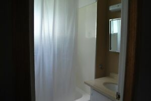 Old South Two Bedroom with Private Patio! Available February London Ontario image 11