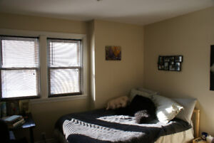 renovated 2 bedroom in convenient downtown location near transit
