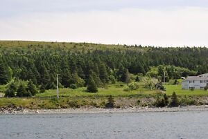 Oceanfront Property for Sale - Hr. Grace South, NL. St. John's Newfoundland image 3