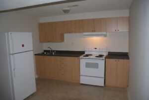 Basement Apartment 1 BR for rent
