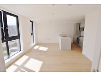 Large Brand New 3 bed apartment in prime location - Cheshire Street, Brick Lane, E2
