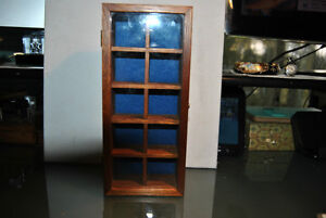 Collections Display Case