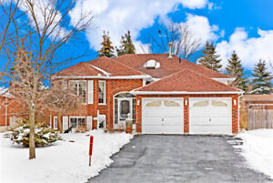 2 Bdrm Upper Level Bungalow for Rent Barrie