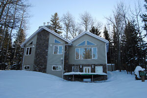 FOR SALE ELKWATER walkout bungalow on corner lot