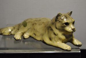 Old Mortens Studio Cat