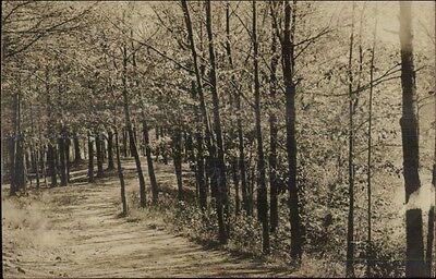 สำหรับขาย Wooded Road Scene - Saugus MA Written on Back Real Photo Postcard c1910