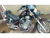 A great Yamaha Virago 535 for sale.