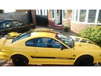 Ford Mustang GT 5.0 V8 Low miles, stunning. 12 Months MOT