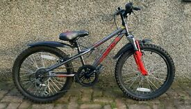 "Boys Apollo Spider bike 20"""