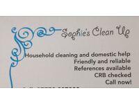 Sophie's clean up