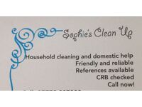 Cleaner/household help/commercial cleans