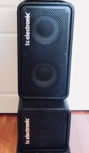 RS210/RS112 (TC ELECTRONIC) bass cabinets