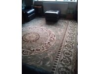 Large Rug - Light Green - 10' x 13' - open to offers
