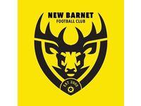 Sunday League Centre Back Needed