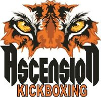 Ascension Martial Arts November Special. 10 Workouts for $50