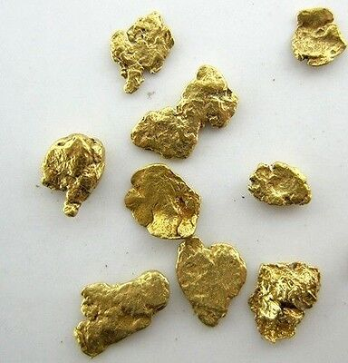 Alaskan Yukon BC  Gold Nuggets  #8 Mesh 2 Grams of Fines