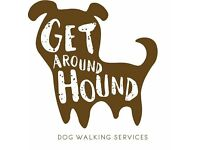 GET AROUND HOUND - Dog walking and other pet services - Gateshead Tyne and Wear - Dog Walker