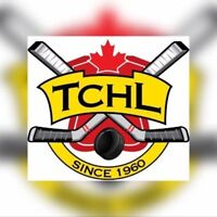 Ball hockey looking for players