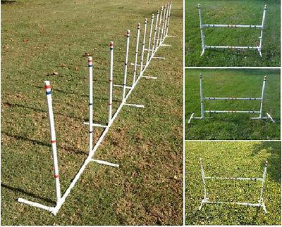 Dog Agility Equipment 4-in-1 Weave Poles (12) plus 3 Versatile Jumps