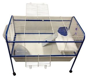 NEED GUINEA PIG CAGES ON STANDS URGENTLY East Ipswich Ipswich City Preview