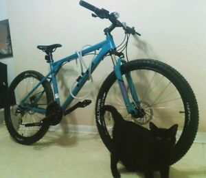 To The Person who just bought this Bike...Its stolen..