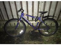 Hybrid Carerra Bike