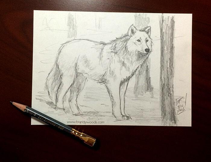 Original+5x7+WOLF+wildlife+artwork+sketch+pencil+drawing+fine+art+artist+artwork