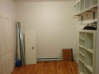 lovely large bedroom in plateau mtl, available june