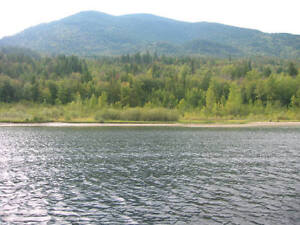 ADAMS LAKE WATERFRONT BETTER THAN SHUSWAP North Shore Greater Vancouver Area image 2