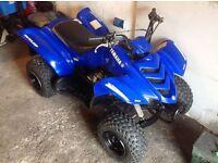 "Yamaha Raptor Yfm 50 ""spares or repairs"" suzuki lt50 80 , ltz ,pw , childs quad"