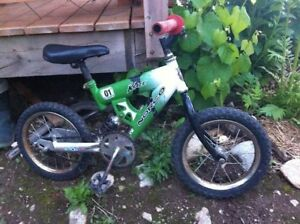 Two Kids Bikes for Sale!