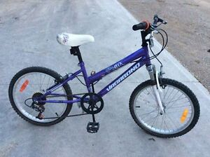 "Girls 18"" Bike - EUC"