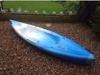 Perception Squirt Kayak- great condition.