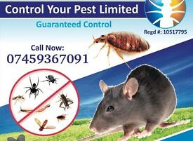 Pest control Mice Rats Wasps Ants Cockroaches Bedbugs starts from £40 !!! CALL NOW 07459367091