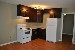 Completely Renovated 1 Bedroom Apartment Downtown Moncton