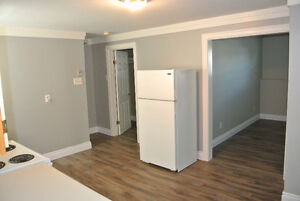 REDUCED!! 2-Apartment Home in Mount Pearl! St. John's Newfoundland image 9