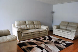 60 Marshall St - Incredibly close to WLU - Summer Room for Rent!