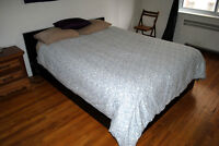 Furnished room in sunny 6 1/2, all Incl., Concordia, 1 Jan-31Aug