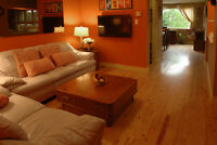Spacious 2 Bedroom Downtown Apartment with Deck