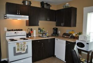 Completely Renovated 3 Bedroom Duplex Downtown Moncton