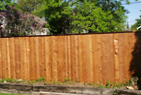 There is still time to get your fence before winter!!