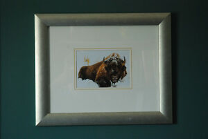 Two beautiful framed bison pictures.