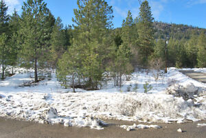 196 Evergreen Way, Vernon--Build your own dream home!