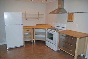 Modern Clean 2-Bedroom Suite for a Great Price!
