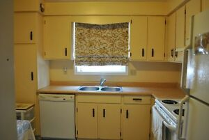 Large Clean Room 5 minutes from the Downtown London Ontario image 6