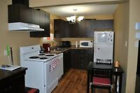 Renovated 1 Bedroom Apartment Downtown Moncton (HEAT & LIGHTS IN