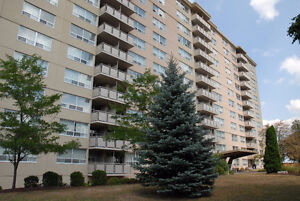All-Inclusive 2 Bed 1 Bath on Margaret Ave! Kitchener / Waterloo Kitchener Area image 1