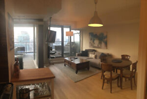 One Bedroom King West Condo for Rent