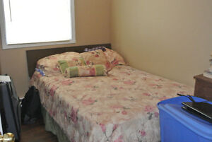 REDUCED!! 2-Apartment Home in Mount Pearl! St. John's Newfoundland image 8