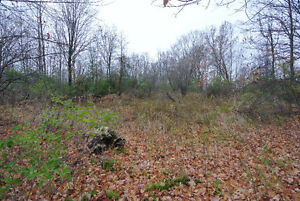 Residential Building Lot - Close to Balsam Lake